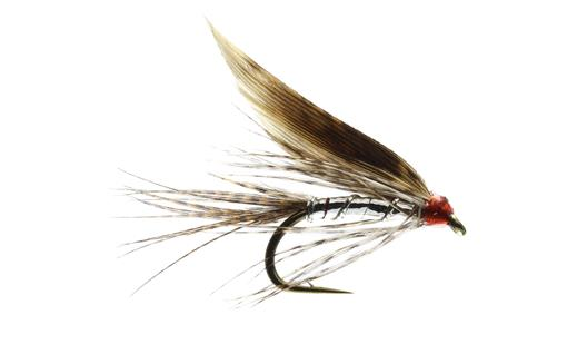 Silver March Brown