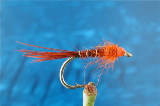 Red Pheasant Tail