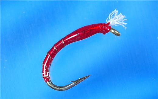 Epoxy Buzzer 3D Bloodworm