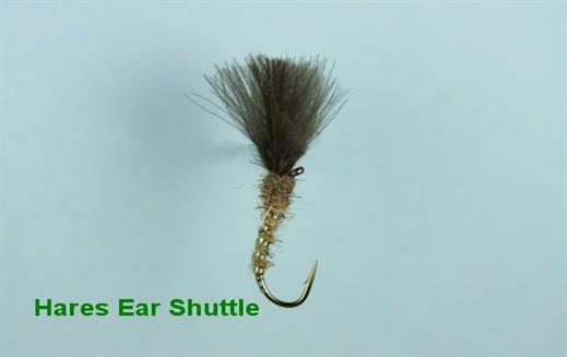 Shuttlecock Hares Ear CDC