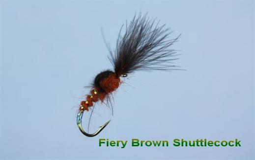 Shuttlecock Fiery Brown CDC