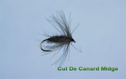 composition andouillette de canard fishing