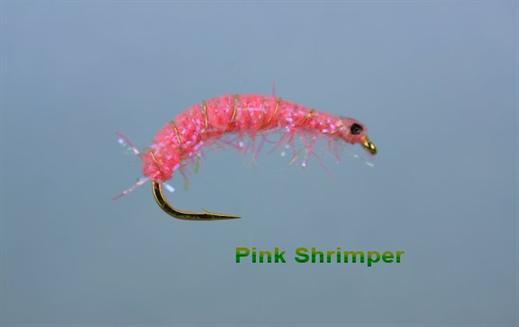 Hot Pink Shrimper