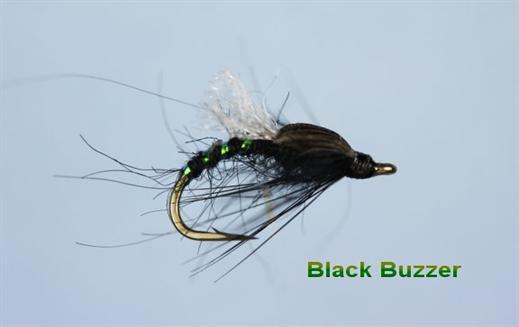 Black Emerging Buzzer