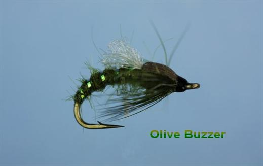 Olive Emerging Buzzer
