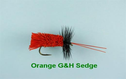 G and H Orange Sedge
