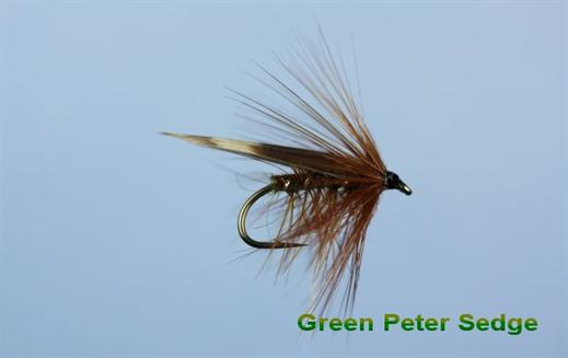 Green Peter Sedge
