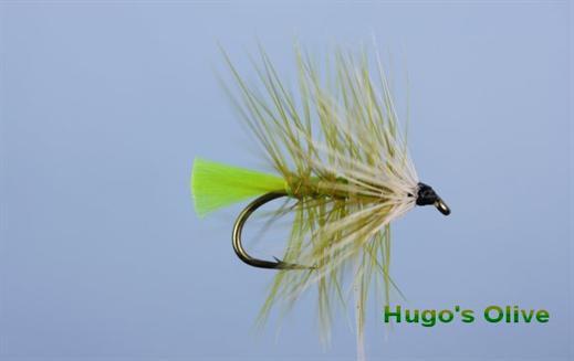 Hugos Olive