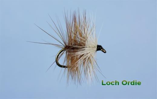 Loch Ordie Hackled Wet