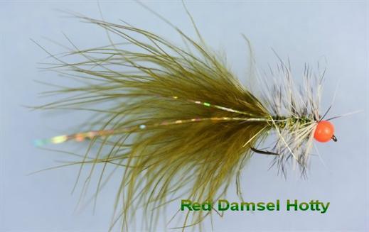 Red Damsel Hotty