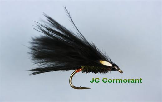 Cormorant JC
