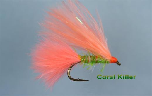 Coral Killer Single