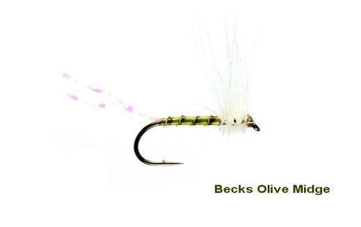 Becks Olive Midge