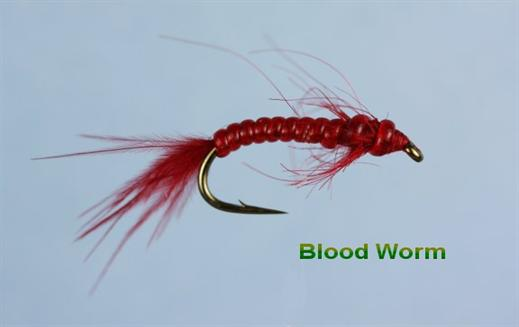 Red Bloodworm