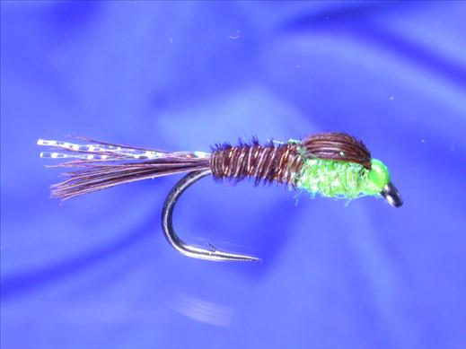 Pheasant Tail Fluo Green