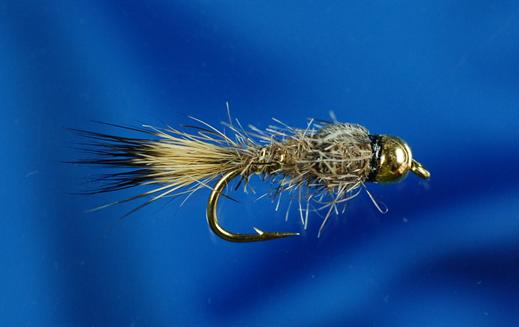 GH Gold Ribbed Hares Ear