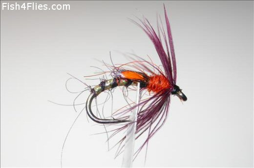 Orange and Claret Buzzer JC