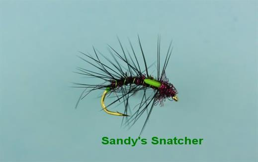Sandy Snatcher
