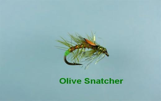 Olive Snatcher