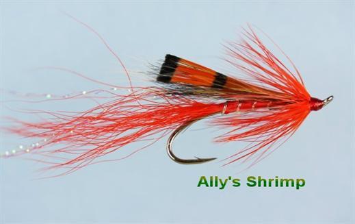 Allys Shrimp