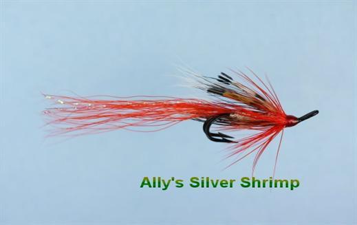 Allys Shrimp Silver