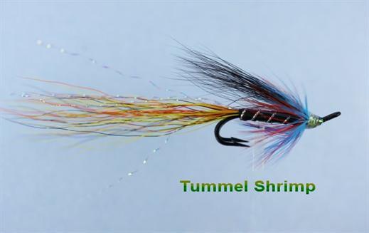Tummel Shrimp