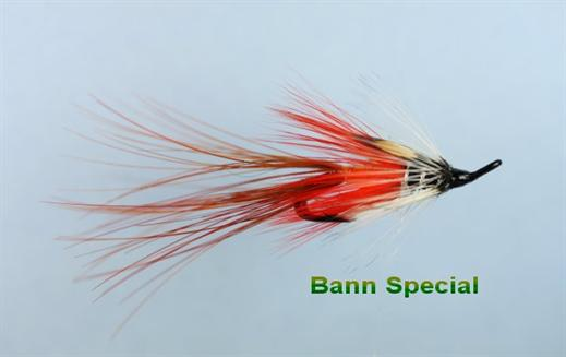Irish Bann Special JC