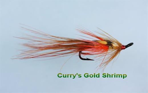 Irish Currys Gold JC