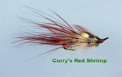 Irish Currys Red JC