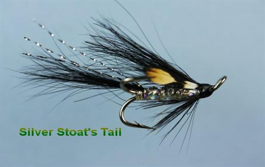 Silver Stoats Tail JC