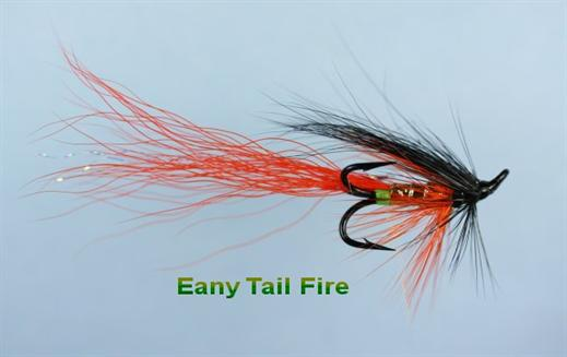 Eany Tail Fire