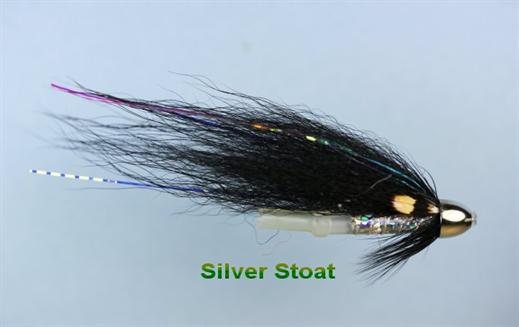 Silver Stoat JC