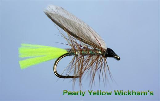 Pearly Yellow Wickhams