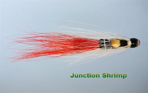 Junction Shrimp JC