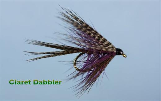 Claret Dabbler