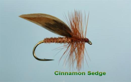 3 Cinnamon Sedges