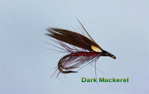 Dark Mackerel JC