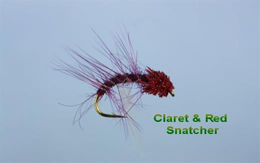 Claret Red Snatcher