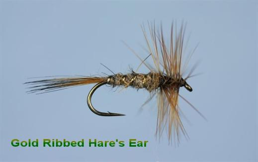Gold Ribbed Hares Ear Hackled