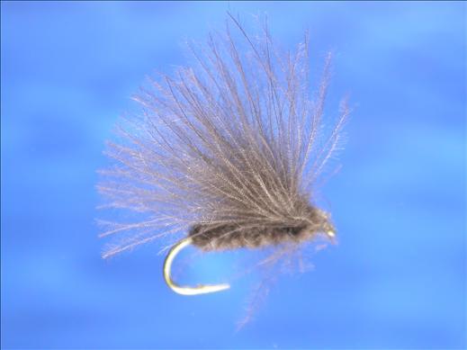 Grey CDC Caddis Fly