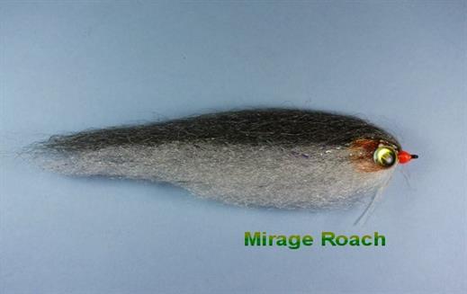 Mirage Roach