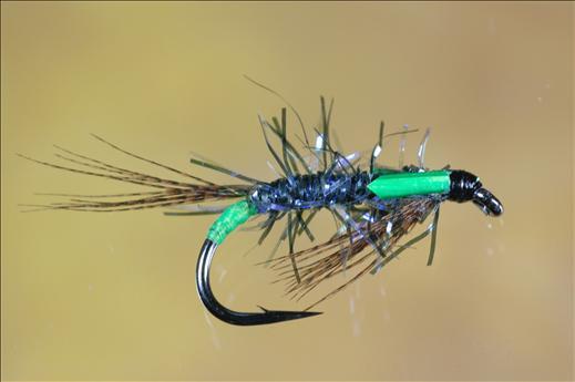 UV Straggle Black and Green Diawl Bach