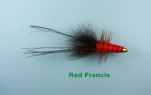 Red Francis Conehead