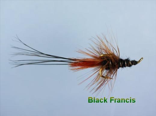 Francis Black