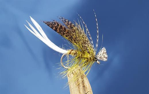 Philip White Hatching Dun Mayfly
