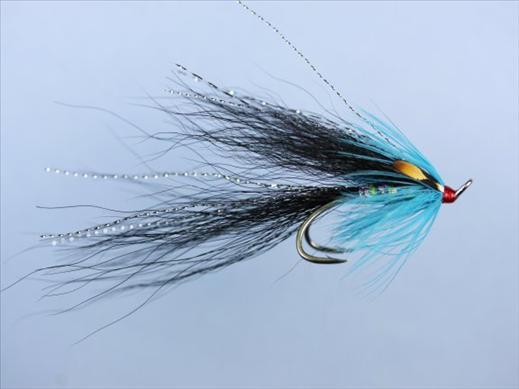 Gledswood Black and Blue Shrimp