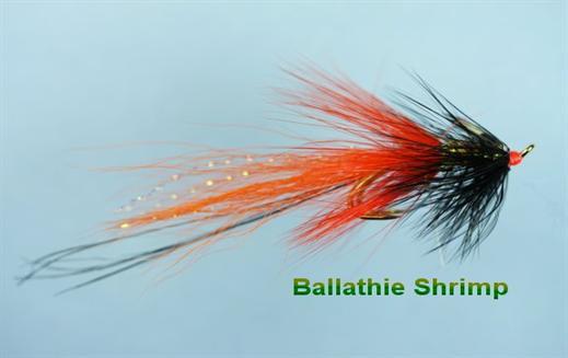 Ballathie Shrimp