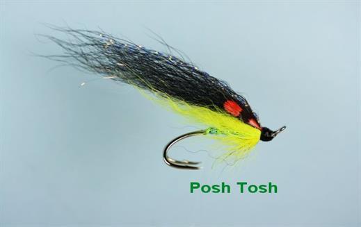 Posh Tosh