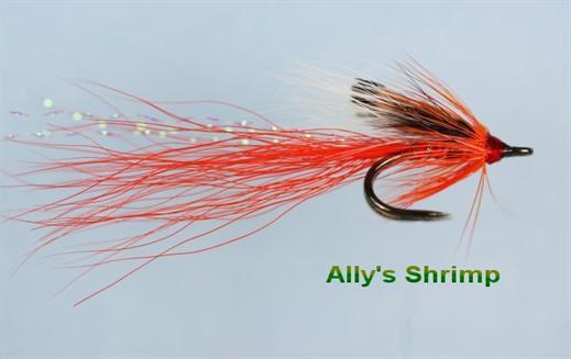Allys Shrimp Nordic