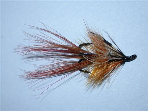 Hutchies Shrimp